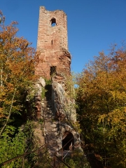 Ruines du château Wasigenstein -  Autumn at Wasigenstein - Precipitous Cascade of Steps