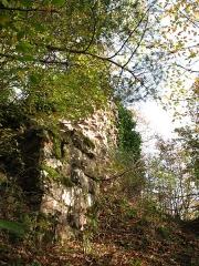 Ruines du château de Hohenstein -  Château du Hohenstein (Oberhaslach) Ruines Hohenstein