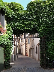 Maison dite cour de Gail -  Alsace, Bas-Rhin, Obernai, Rue de Gail