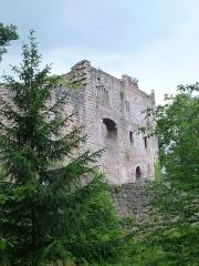Ruines du château de Birkenfels - Français:   Château du Birkenfels (Bas-Rhin)