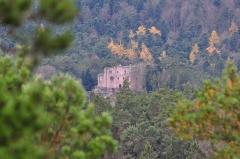 Ruines du château de Birkenfels - Français:   Le château du Birkenfels vu depuis le mur païen