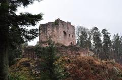 Ruines du château de Birkenfels -  Le Birkenfels