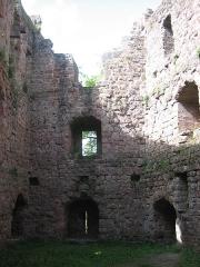 Ruines du château de Birkenfels -  Château du Birkenfels dans la forêt d'Obernai (France)