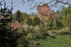 Ruines du château de Rathsamhausen - English: Vicinity of Rathsamhausen Castle near Ottrott, Alsace