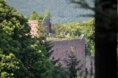 Ruines du château de Rathsamhausen - English: Ruins of Rathsamhausen castle near Ottrott, Alsace