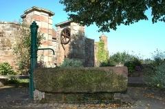 Ruines du château et restes des enceintes fortifiées -  Château -  La Petite Pierre