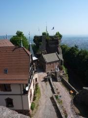 Ruines du château de Hohbarr ou Haut-Barr -  Chateau de Haut Barr, Saverne