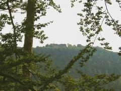 Ruines du château de Hohbarr ou Haut-Barr -  Chateau Haut-Barr, Haut-Barr Castle, Burg Hohbarr (Saverne, Alsace)