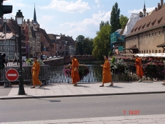 Ancienne douane -  Bonzi su Pont du Corbeau, Strasbourg