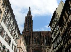Maison - English: Münster, Westfassade
