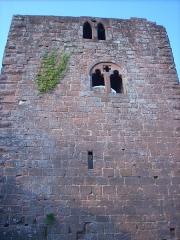 Ruines du château du Nouveau-Windstein - English: Nouveau-Windstein castle (Alsace - France)