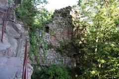 Ruines du château du Vieux-Windstein -  DSC_6642