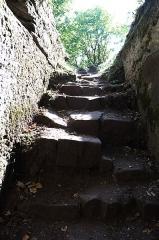 Ruines du château du Vieux-Windstein -  DSC_6707