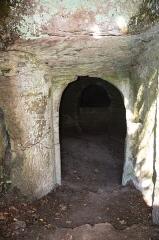 Ruines du château du Vieux-Windstein -  DSC_6706