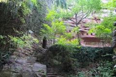Ruines du château du Vieux-Windstein -  DSC_6661