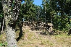 Ruines du château du Vieux-Windstein -  DSC_6590