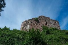 Château de Hohenbourg -  DSC_3474