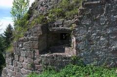 Château de Hohenbourg -  DSC_3490