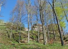 Château de Loewenstein - Ruines du château de Loewenstein (Bas-Rhin).
