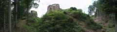 Château de Dreistein -  Tu vois le chemin débroussaillé? L'an passé, j'avais dû le trouver sous un paquet de ronces, avec une gamine sur le dos. Mais au moins, la cour du château était pleine de fraises des bois...