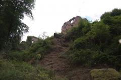 Château de Dreistein -  DSC_2338