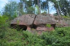 Château de Dreistein -  DSC_2335