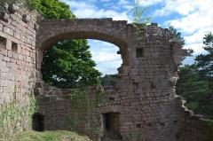 Château de Dreistein -  DSC_2416