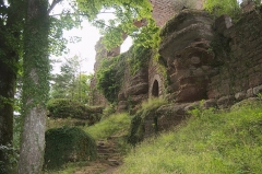 Château de Dreistein -  DSC_2371