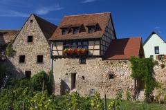 Vestiges des anciennes fortifications - Fortifications de Bergheim, Ville (Classé, 1948)