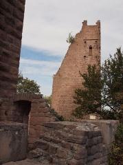 Ruines du château de Dagsbourg -  Château de Wahlenbourg, XII e