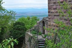 Ruines du château de Dagsbourg -  Wahlenbourg - Dagsbourg - Weckmund