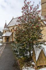Eglise catholique Saint-Bernard-de-Menthon -  Ferrette, Alsace, France, Eglise