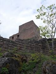 Ruines des châteaux de Weckmund et de Wahlenbourg -  Château d'Husseren