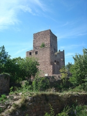 Ruines des châteaux de Weckmund et de Wahlenbourg - English:   The castle area Les Trois Château near Eguisheim, France.