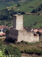 Château de Wineck - Deutsch: Die Burgruine Winecke in Katzenthal, Haut-Rhin, Frankreich, von Nordwesten gesehen