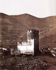 Château dit Schlossberg et enceinte - Deutsch: Ansicht der elsässischen Burg Kaysersberg von Norden