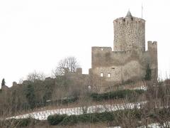 Château dit Schlossberg et enceinte - English: The castle of Kaysersberg, seen from the village, Haut-Rhin, France.