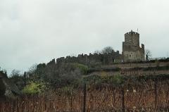 Château dit Schlossberg et enceinte - Château de Kaysersberg.