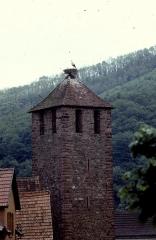 Tour dite des Sorcières dans le jardin de l'Hôtel Chambord -  Alsace Alsace Kaysersberg Tour Porte Haute Cigogne 041990