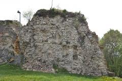 Ruines du château de Landskron -  2017-04-11 Landskron 019