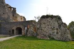 Ruines du château de Landskron -  2017-04-11 Landskron 020