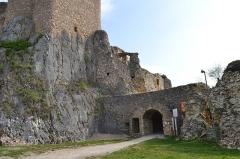 Ruines du château de Landskron -  2017-04-11 Landskron 021