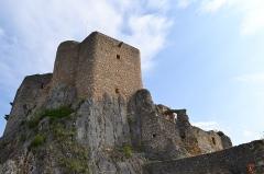 Ruines du château de Landskron -  2017-04-11 Landskron 022