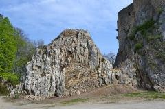 Ruines du château de Landskron -  2017-04-11 Landskron 024