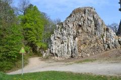 Ruines du château de Landskron -  2017-04-11 Landskron 025