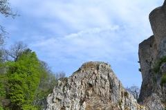 Ruines du château de Landskron -  2017-04-11 Landskron 026