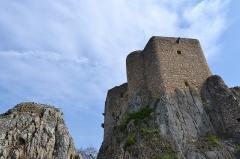 Ruines du château de Landskron -  2017-04-11 Landskron 027