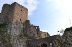 Ruines du château de Landskron -  2017-04-11 Landskron 028
