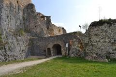 Ruines du château de Landskron -  2017-04-11 Landskron 029