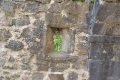 Ruines du château de Landskron -  2017-04-11 Landskron 043